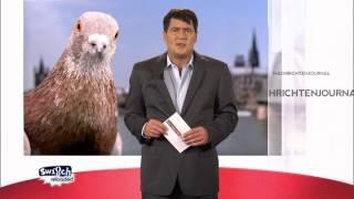 Das Nachrichtenjournal: Monster Tauben