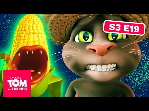 NEW! Corn Heads - Talking Tom and Friends | Season 3 Episode 19