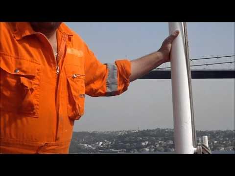 container vessel ZIM DALIAN 2010