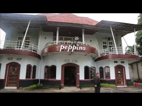 Review Resto Terbaik Kota Bogor - Peppino House