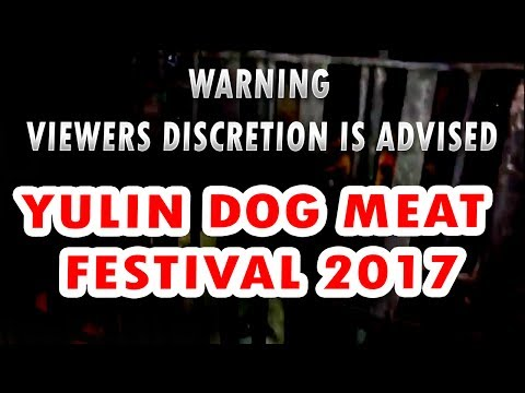 Yulin Dog Meat Festival 2017