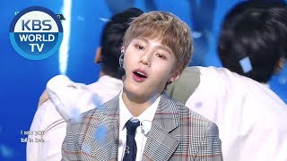 HA SUNG WOON(하성운) - BIRD[Music Bank/2019.03.08]