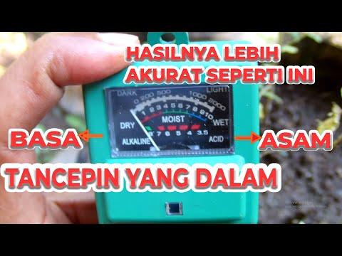 Cara Tepat Mengukur Ph Tanah Dengan Ph Meter Di Pot Dan Polybag