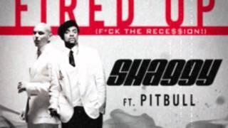 Pitbull ft. Shaggy