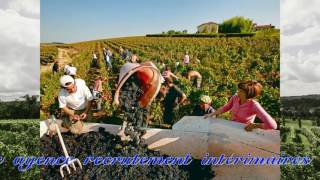 Video Lex Interim - interim roumain download MP3, 3GP, MP4, WEBM, AVI, FLV Juni 2017