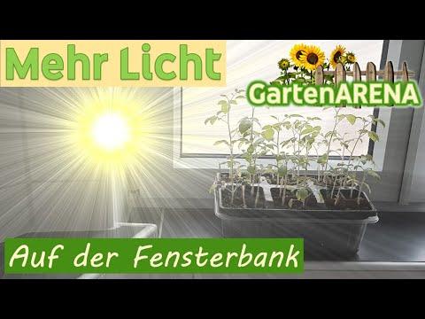 mit-diesem-trick-hast-du-mehr-licht-auf-der-fensterbank- -die-pflanzen-wachsen-gerade-und-schneller!