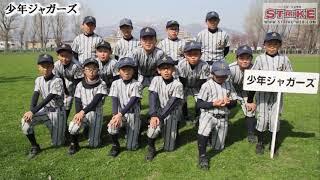 北海道の少年野球、少女野球を応援するウェブマガジン ベースボール北海...