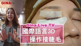 GinaTV-3D嫁接睫毛是單根式嫁接?還是3D是三根?國際用語3D eyelash extensions