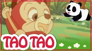 Tao Tao - 19 - הקשת בירד