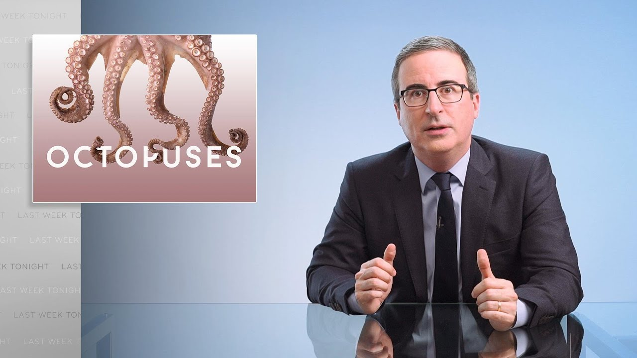 Download Octopuses: Last Week Tonight with John Oliver (Web Exclusive)