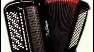 Boza Nikolic- Aca Cergar-Misa Coravi-Idi iz mog grada (LIVE).flv