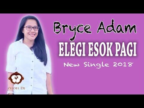 Bryce Adam - Elegi Esok Pagi (Video Lyrics)