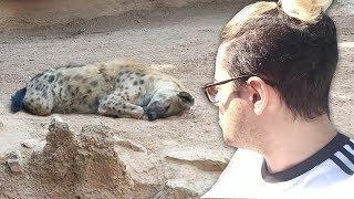 ¡NOS PERDEMOS EN LA JUNGLA EN LA VIDA REAL! *ENCUENTRO ANIMALES PELIGROSOS* | LA ORGANIZACIÓN