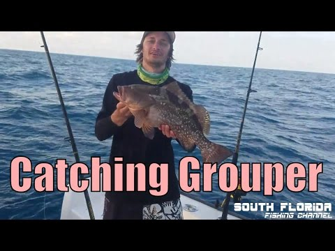 Grouper Fishing In Key Largo - Smoking Small Reels On Light Tackle