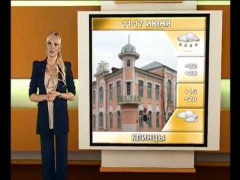Прогноз погоды для Брянской области от Миссис Мира