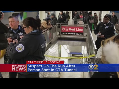 Lance Houston - Gunfire at CTA Station in the Loop During Thursday Night Rush Hour