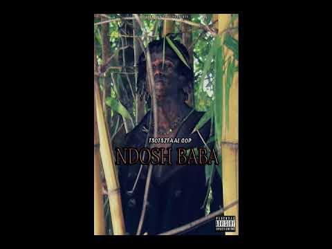 Ndosh-tsotsitaal cop(official audio)