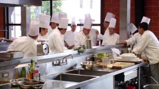 the culinary institute of america why we matter
