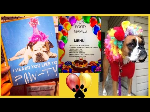 dog-birthday-party-food-menu-boxer-poodle-puppies---diy-dog-food-by-cooking-for-dogs