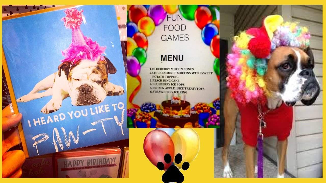 Dog birthday party food menu boxer poodle puppies diy dog food by dog birthday party food menu boxer poodle puppies diy dog food by cooking for dogs forumfinder Choice Image