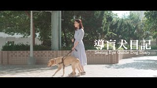 導盲犬日記  Seeing Eye Guide Dog Diary