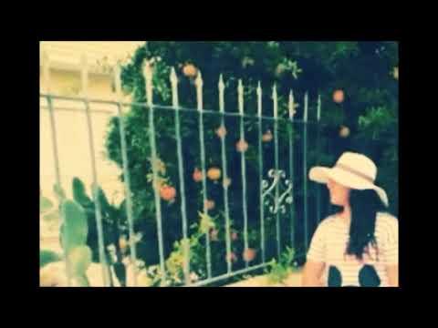 Haluk Levent - Anlasana ( Cover Elif )
