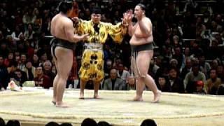 お笑いぎゅぎゅっと!初っ切り楽し~(2009年大相撲トーナメント)