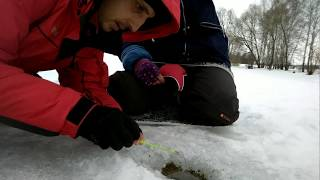 Зимняя ловля плотвы на Чистых прудах