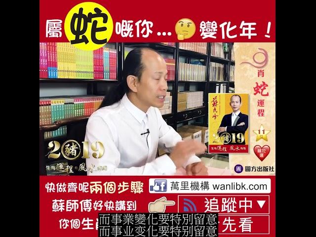 蘇民峰 2019豬 生肖運程*風水佈局 (蛇) (繁简字幕)