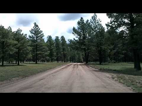 Jemez Mountains Tour Part 2: Teakettle Rock to NM-4 Time Lapse Drive