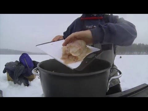 Fish Chowder On The Ice