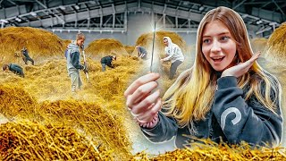 Who will be the FIRST to find the NEEDLE IN THE HAY STACK, will receive 250,000 RUBLES!