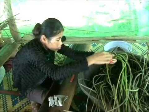 Samatoa, an eco textile company, Siem Reap, Cambodia