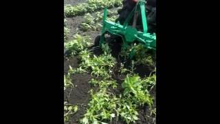картофелекопалка(Картофелекопалка для мини-трактора., 2016-07-30T13:10:55.000Z)