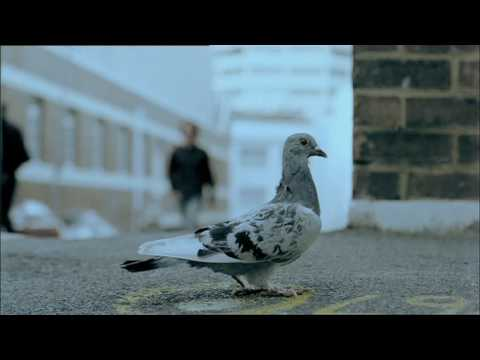 Bond University 60-second TV AD 'Chase' 2007