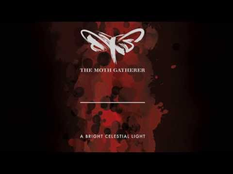 The Moth Gatherer - Intervention
