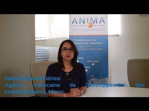 Interview Safae Sijilmassi Idrissi, Agence Marocaine des Développement des Investissements