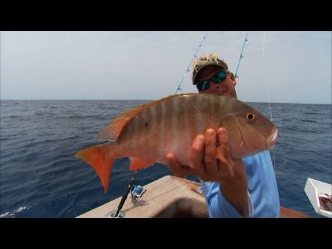 Bimini Bahamas Fishing Deep Dropping For Snapper And Grouper