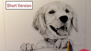 Pencil Drawing: Dog #1 (How to draw fur) - Short Version