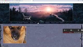 Собака (и не только) в Деревне 2 часть CatWar