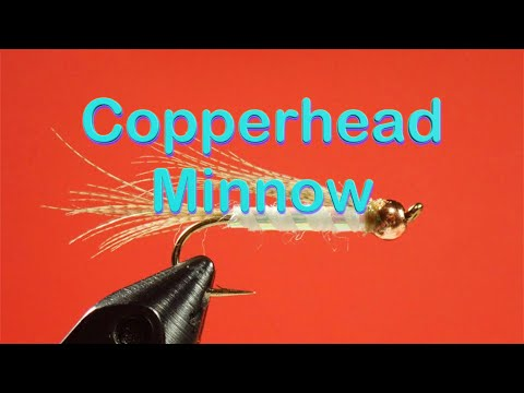 Beginner's Fly Tying Series: Easy Streamer Series - The Copperhead Minnow