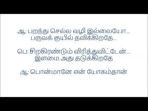 Naan Thedum Sevvanthi Poovithu - Karaoke