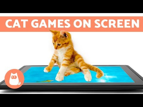 Entertainment VIDEO FOR CATS to Watch 😼 CAT GAMES ON SCREEN
