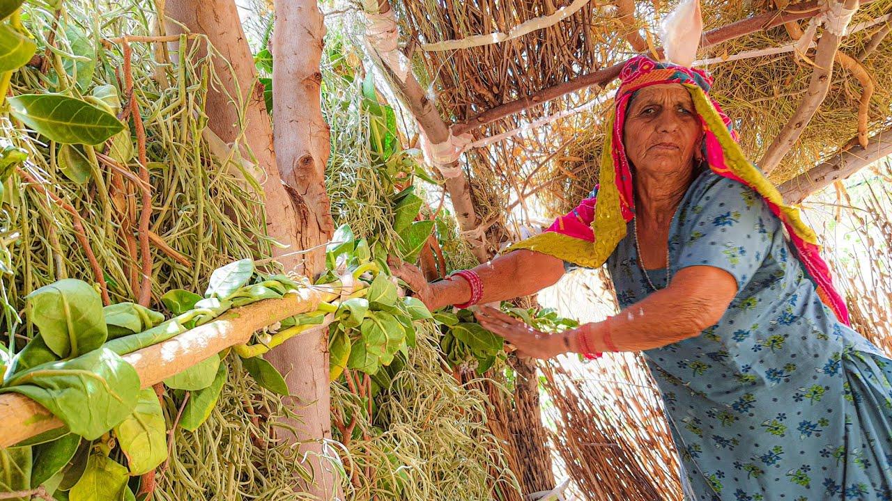 मेरी 70 साल की दादी आज भी क्या क्या करती है ! 😲 झोपड़ी में रहना ही पसंद है || Hut house Village