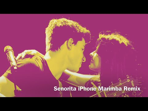 Download Lagu  iPhone Ringtone Señorita Remix 2019 Mp3 Free