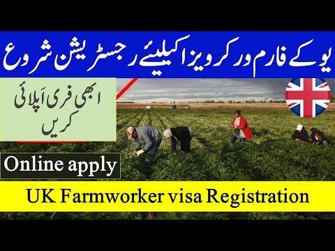 UK Farmworker visa companies started registration for seasonal worker visa.