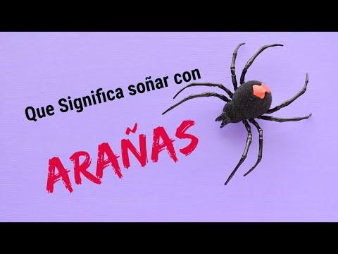 Que significa soñar con arañas?  Significado de los sueños.Conoce el significado de soñar tarantulas
