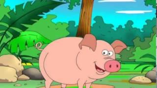 Развивающие мультфильмы   Твои Первые Животные