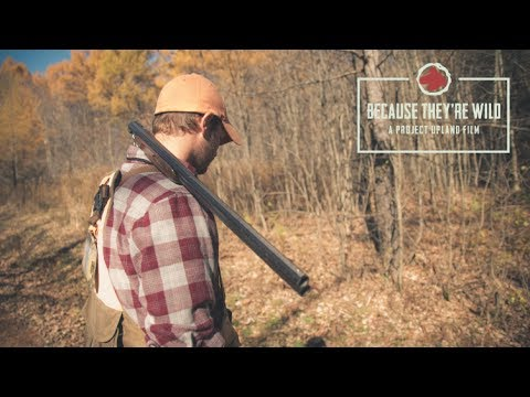 Because They're Wild - A New York Ruffed Grouse Hunting Story - Project Upland Original Film