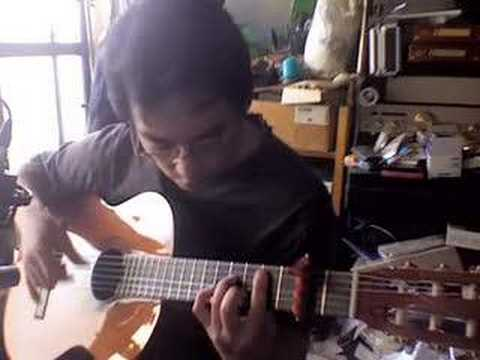 The Boxer (Fingerstyle Guitar)